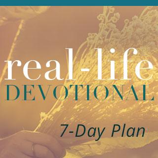 Real-Life Bible Reading Plan