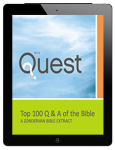 Top 100 Q and A ebook