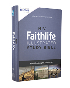 https://store.faithgateway.com/products/niv-faithlife-illustrated-study-bible-hardcover-biblical-insights-you-can-see