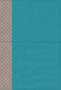 NIV Study Bible Teal/gray leathersoft