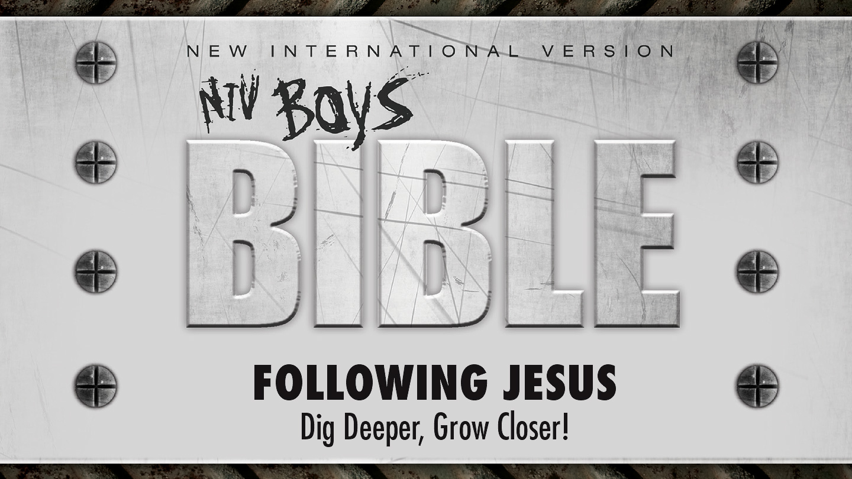 NIV Boys Bible reading plan