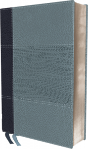 NIV Study Bible Personal Size Navy/Blue Leathersoft