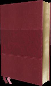 NIV Study Bible burgundy leathersoft large print