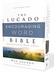 https://store.faithgateway.com/products/niv-lucado-encouraging-word-bible-cloth-over-board-gray-comfort-print-holy-bible-new-international-version