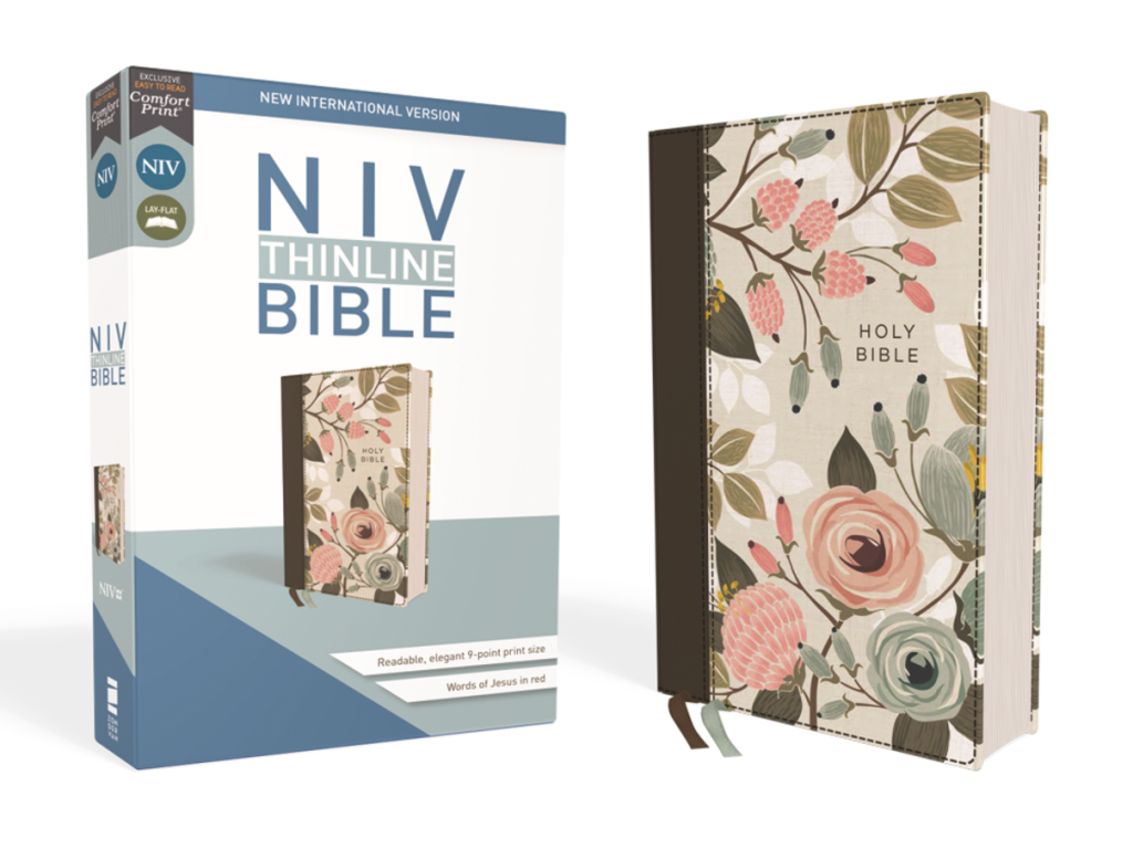 NIV Thin Line Bible
